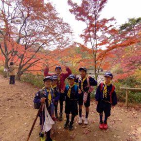 神戸森林公園 紅葉ハイキング